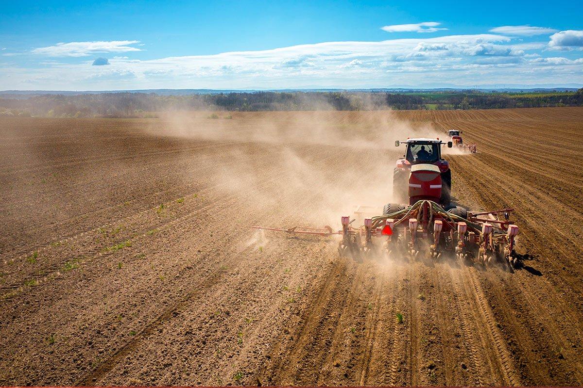 Soil erosion solution
