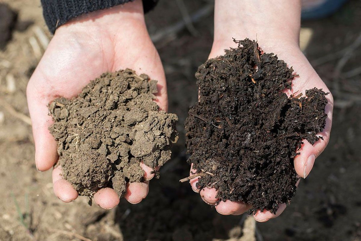 creating organic sustainable soil farming